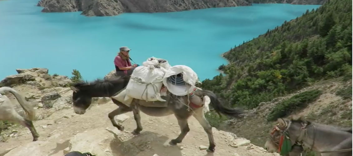 Upper Dolpo and Shey Gompa Trek